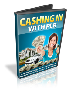 Cashing In With PLR - Week of May 28, 2012