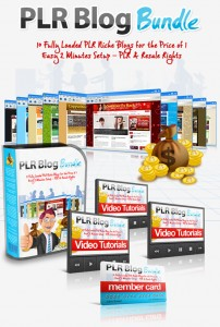 PLR Blog Bundle - May 2012