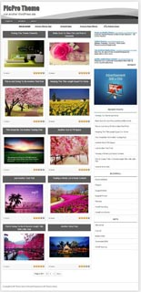 Picpro Wordpress Theme