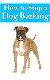 How To Stop A Dog Barking