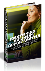 Identifying Business Opportunities